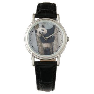 Relógio De Pulso Panda nova que escala uma árvore, China