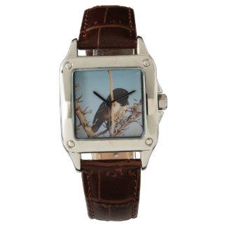Relógio De Pulso Pássaro de Bingham