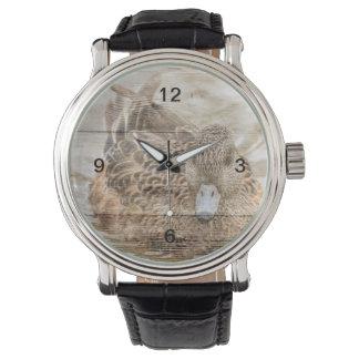 Relógio De Pulso Pato selvagem da lagoa primitiva do país do