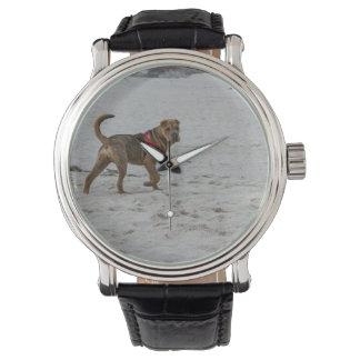 Relógio De Pulso pei shar na praia
