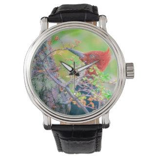 Relógio De Pulso Pica-pau na floresta que Pecking a árvore