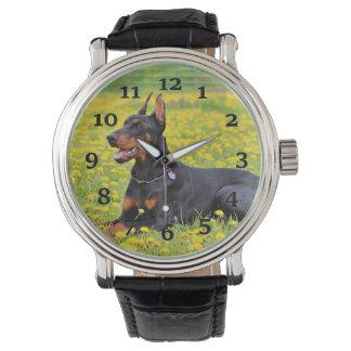 Relógio De Pulso Pinscher do Doberman