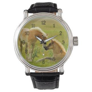 Relógio De Pulso Potros do cavalo