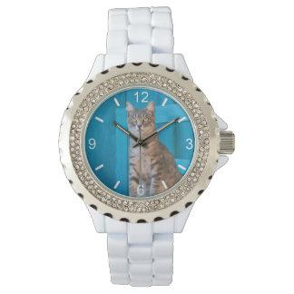 Relógio De Pulso Seletor-placa azul da foto da cadeira do gatinho
