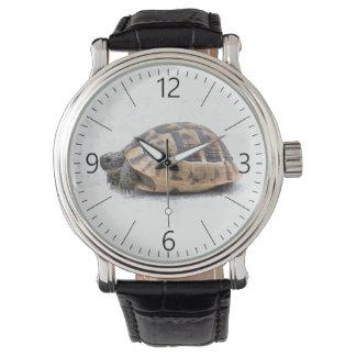 Relógio De Pulso Tartaruga