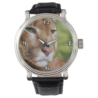 Relógio De Pulso TCWC - Arte do leão de montanha do puma