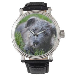 Relógio De Pulso vale do filhote de cachorro imaal