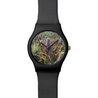 Relógio do campo do abacaxi