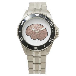 Relógio do cérebro humano