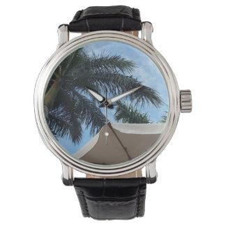 Relógio do couro da palmeira de Tenerife