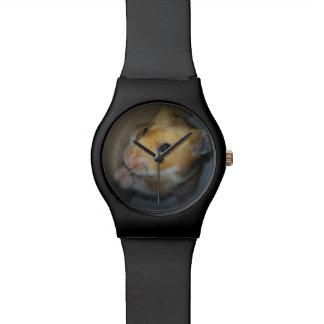 Relógio do hamster