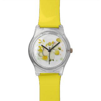 Relógio engraçado dos pássaros & dos limões