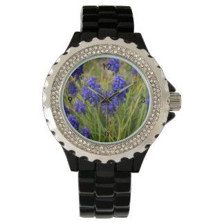 Relógio Família dos jacintos de uva