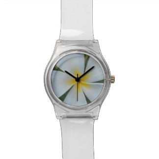 Relógio Flor tropical branca do plumeria de Fiji