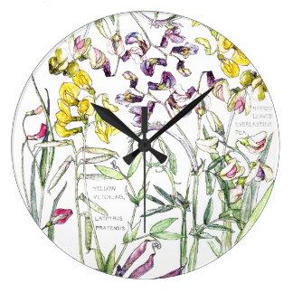 Relógio Grande A ervilha botânica floresce o pulso de disparo de