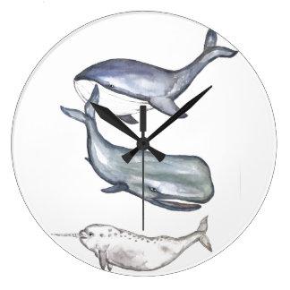 Relógio Grande Baleias, família de baleia, baleia de corcova,