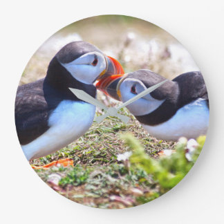 Relógio Grande Beijando o pulso de disparo dos papagaio-do-mar
