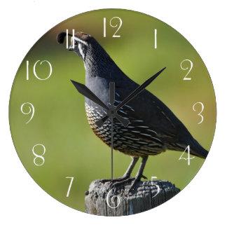 Relógio Grande Codorniz californianas