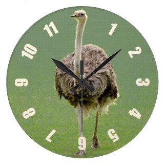 Relógio Grande Emu