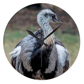 Relógio Grande Emu novo no parque natural