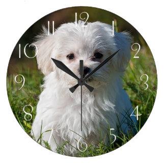 Relógio Grande Filhote de cachorro maltês