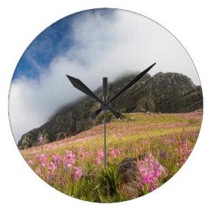 d552922feff Relógio Grande Opinião de baixo ângulo de Watsonias contra as