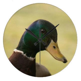 Relógio Grande Pato do pato selvagem