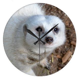 Relógio Grande Pele branca Meerkat da neve, grande pulso de