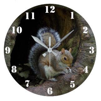 Relógio Grande Pulso de disparo do esquilo