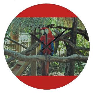 Relógio Grande Pulso de disparo vermelho do Macaw
