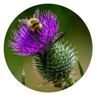 Relógio Grande Wildflowers Pollinating da abelha do deserto em