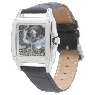 Relógio Insetos de observação do gatinho da concha de