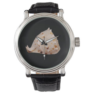 Relógio O Conch Shell olha