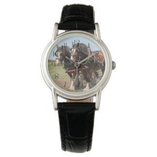 Relógio Ploughing bonito dos cavalos do clydesdale