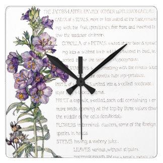 Relógio Quadrado A família botânica da escada de Jacobs floresce o