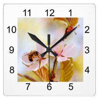 Relógio Quadrado Abelha em uma flor da cereja
