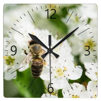 Relógio Quadrado Abelha que senta-se em uma flor do primavera