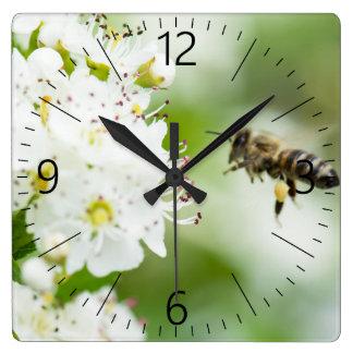 Relógio Quadrado Abelha que voa à flor do primavera