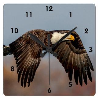 Relógio Quadrado Águia americana em vôo