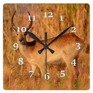 Relógio Quadrado Antílope