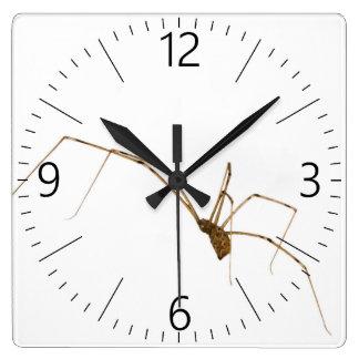 Relógio Quadrado Aranha
