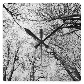 Relógio Quadrado Árvores que alcançam para o céu