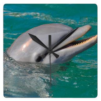 Relógio Quadrado Ascendente próximo do golfinho