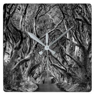 Relógio Quadrado Avenida da floresta