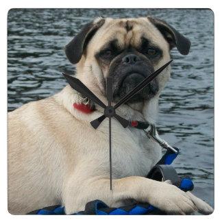 Relógio Quadrado Cão considerável do Pug