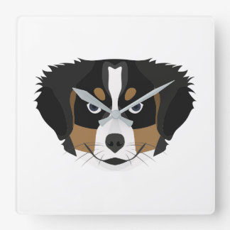 Relógio Quadrado Cão de montanha de Bernese da ilustração
