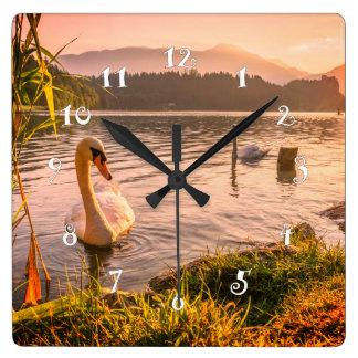 Relógio Quadrado Cisne bonita, fim acima, pulso de disparo de