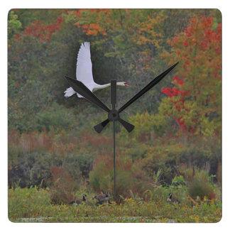 Relógio Quadrado Cisne muda em vôo