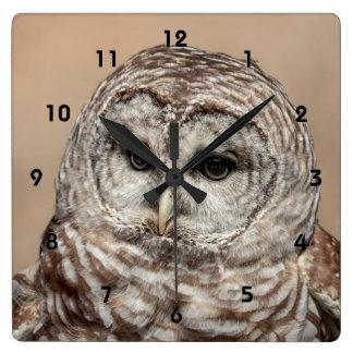 Relógio Quadrado Coruja barrada