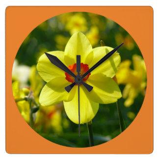 Relógio Quadrado Daffodil amarelo alaranjado 02.2_rd